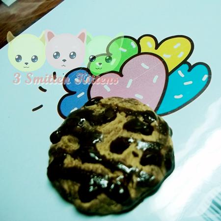 diycookie5